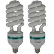 E27 Daylight Bulb