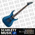 ESP Acoustic Guitars