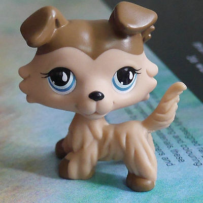 "LPS COLLECTION LITTLEST PET SHOP Brown Collie dog  RARE TOY 2"" #"