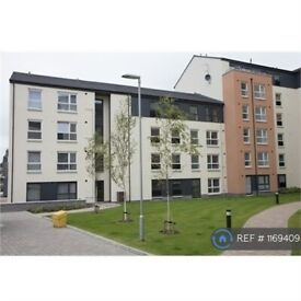 2 bedroom flat in Park Road, Aberdeen, AB24 (2 bed) (#1169409)