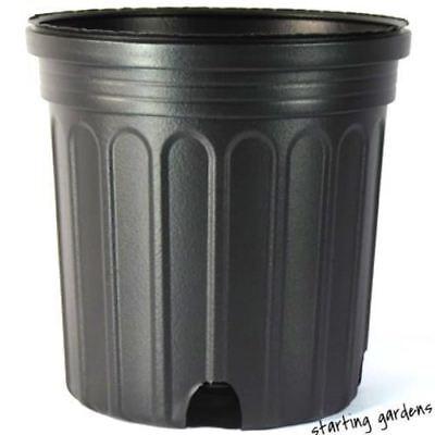 1 Gallon Nursery Pot (Qty. 100), Black Trade Gallon, 6.5 x 6.25 Inch