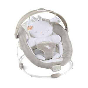baby Ingenuity bouncer chair