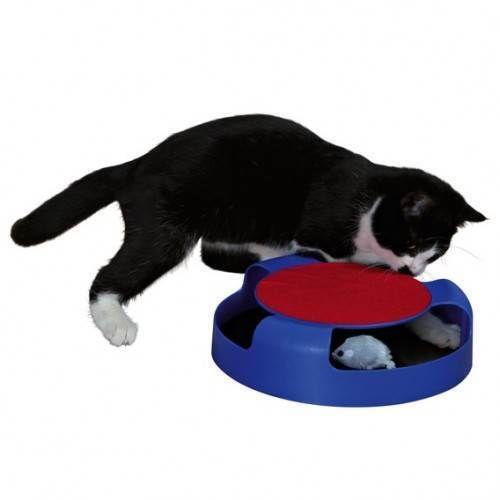 moving cat toy ebay. Black Bedroom Furniture Sets. Home Design Ideas