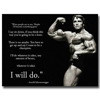 Arnold Schwarzenegger Motivational Quotes Silk Poster 13X18  24X32