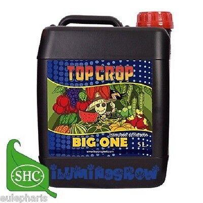 BIG ONE 5L Abono Bio-estimulador de Floracion Organico, Fertilizante TOP CROP
