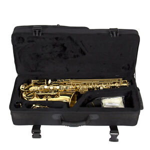 New Professional Gold Eb Alto Sax Saxophone with Accessories