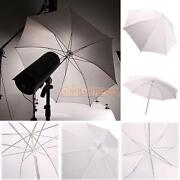 Translucent Umbrella