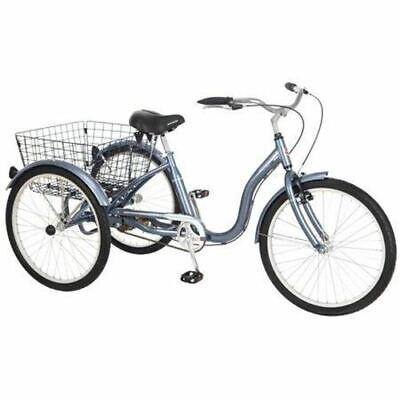 24 meridian adult tricycle grey