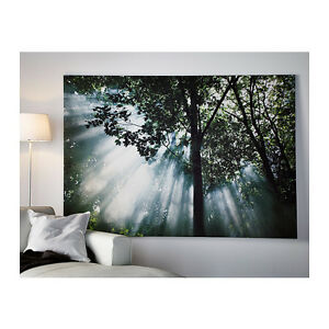 Gorgeous Forest Picture- Canvas From Ikea - Huge & Breathtaking
