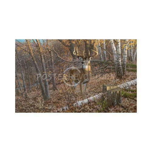 Deer wall mural ebay for Deer mural wallpaper