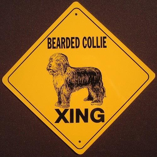 BEARDED COLLIE XING ALUMINUM Sign dogs decor picture signs novelty animals