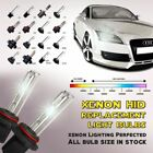 HID Kit Car & Truck Xenon Lights with 2 Years not Ballast Included