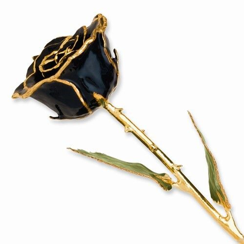 Black Rose 24K Yellow Gold or Silver Trimmed Lacquered Long Stem Forever Rose