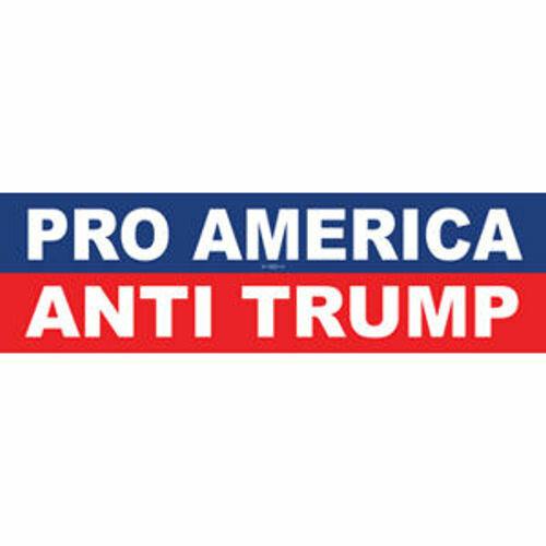 Pro America Anti Donald Trump Vinyl Bumper Sticker Decal