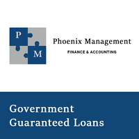 Government Guaranteed Loans & Lines of Credit