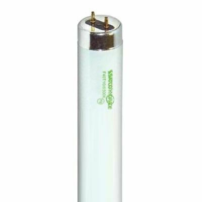 Satco S7964 - 40 watt, T10, Fluorescent Bulb, 6500K DayLight, Medium Bi Pin base Base 6500k Daylight Fluorescent Tube