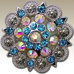 Turquoise & AB Round Crystal Berry Headstall Horse Tack Rhinestone Concho 1-1/2