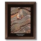 Zebra Wall Pictures