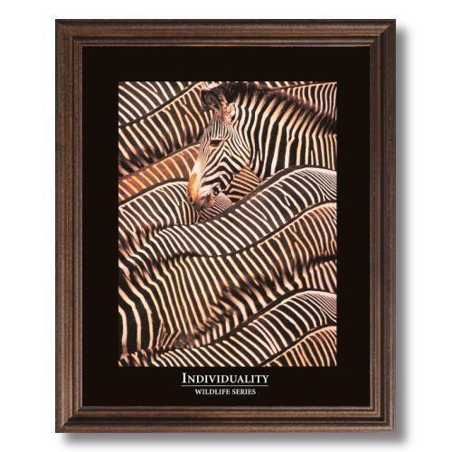 Zebra Wall Pictures Ebay