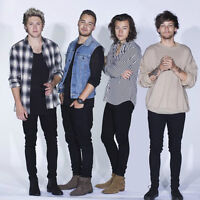 One Direction: On The Road Again Tour Toronto