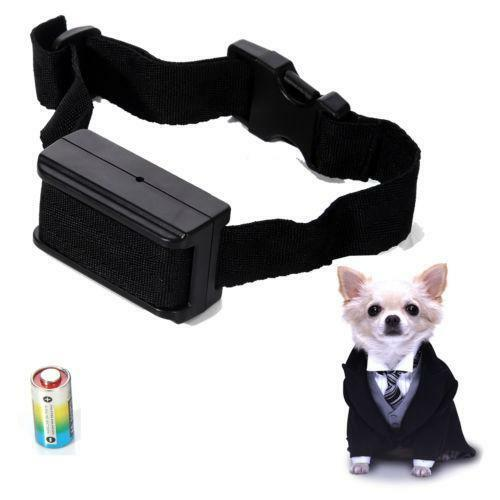 Electronic Dog Collar Ebay