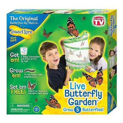 Insect Lore Original Butterfly Garden with Voucher New