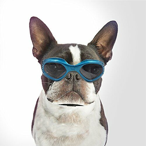 Namsan Pet Goggles Doggles Goggles Sunglasses for Dog -Blue