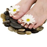 Reflexology and foot care technician