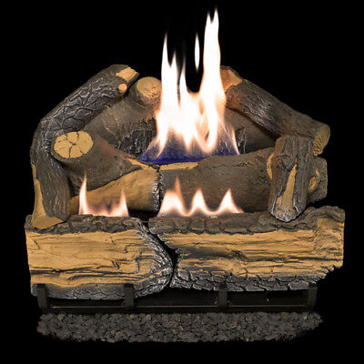 Gas Fireplace Burner (Recon Cedar Ridge Hearth 18in 30,000-BTU Dual-Burner Ventless Gas Fireplace Log )