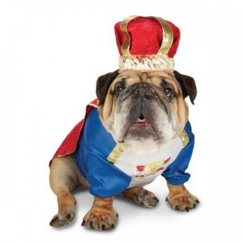 Pet Dog Cat Superhero Christmas Gift Halloween Party Fancy Dress Costume Outfit 10