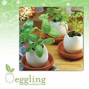 Egglings Crack & Grow Kit Bassendean Bassendean Area Preview