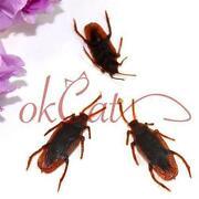 Fake Roaches