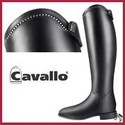 Cavallo Junior