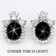 Blue Star Sapphire Earrings