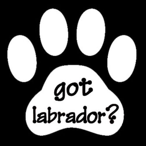 GOT LABRADOR STICKER VINYL DECAL