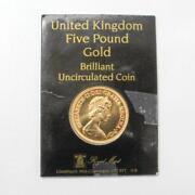 5 Pound Gold