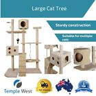 Sisal Cat Activity Centers