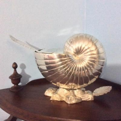 Silver Nautilus Shell Spoon Warmer – Downton Abbey Elegance At Its (Elegance At Its Best)