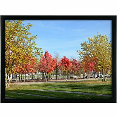 12x16 Black Picture Frame Made to Display Pictures 12x16 without Mat