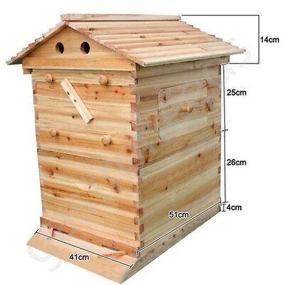 Automatische Honigproduktion Waben Bienenhaus Bienenstock Imkerei (ca Flow Hive)