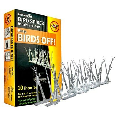 Bird-X Plastic Polycarbonate Bird Spikes Kit with Adhesive Glue, Covers 10 feet