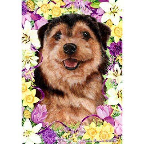 Easter House Flag - Norfolk Terrier 33225