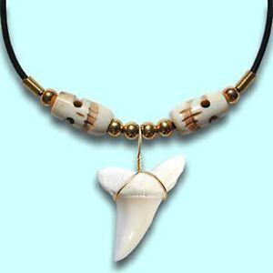 Real Mako Shark Tooth Pendant Surfer Necklace for Men    Bone Skull Beads