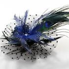 Feather Hair Accessories