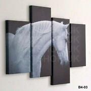 Horse Canvas Pictures