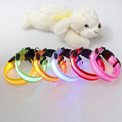Dark Cat (Nylon LED Pet Dog Cat Collar,Night Safety Flashing Glow In The Dark Dogs Leash W )