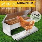 Unbranded Backyard Poultry & Waterfowl Food