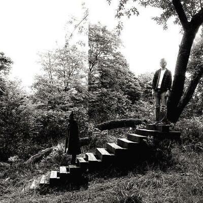 Timber Timbre - Timber Timbre (NEW VINYL LP)