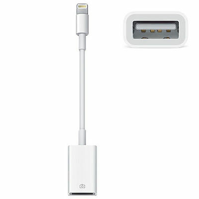 Apple Display Connector Audio And Video Interfaces And