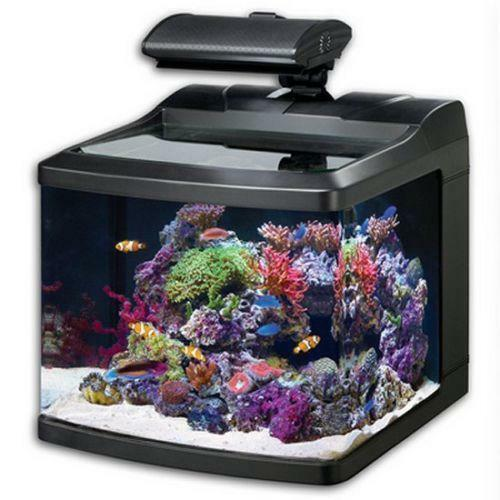 Bio cube fish tank ebay for Bio cube fish tank